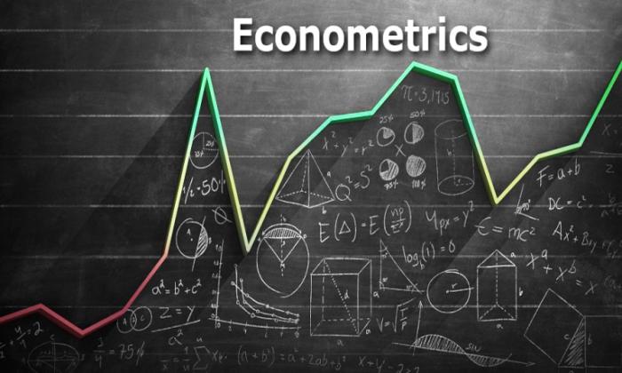 ¿Qué es la econometría y en qué consiste?